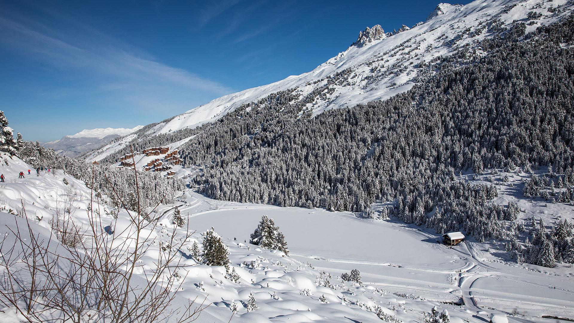 The magic of the forest at the heart of Les 3 Vallées
